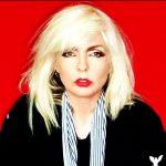 Blondie_D1_1